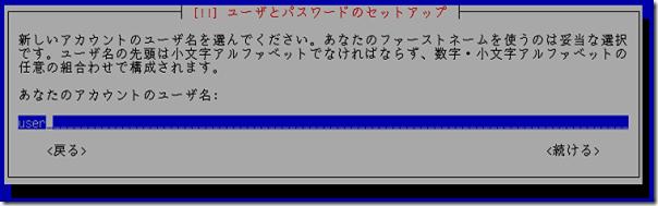 debian_install11