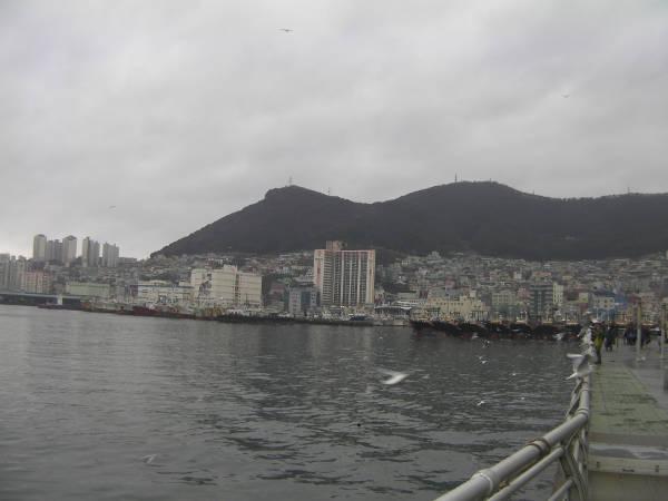 釜山といえば釜山港です。