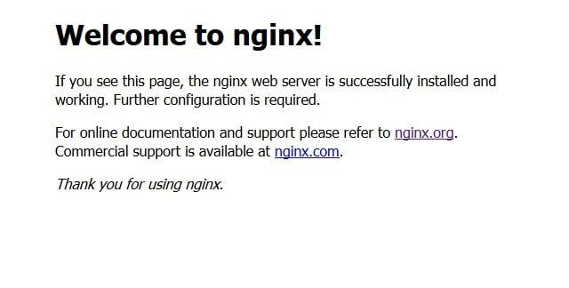 nginx-start-1