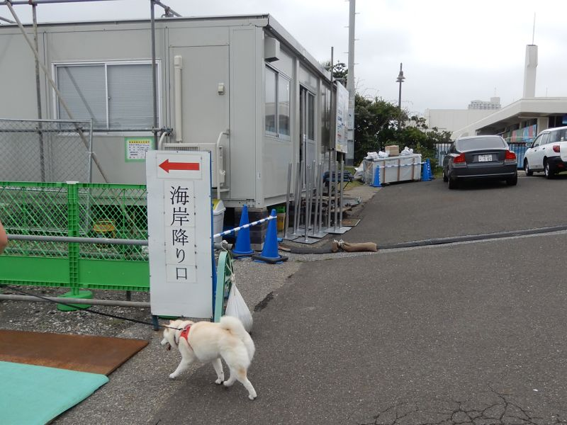 kamogawa-goyutei14-1